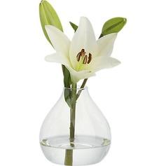 Довольно стекло ваза (128035746)